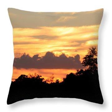 Sunset 1 Throw Pillow by Veronica Ventress