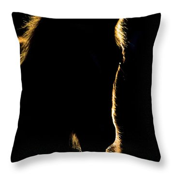 Sunset Horse Silhouette Canada Throw Pillow by Mark Duffy