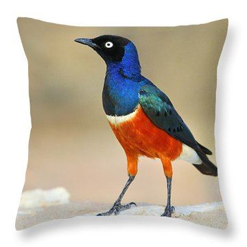 Superb Throw Pillow by Tony Beck