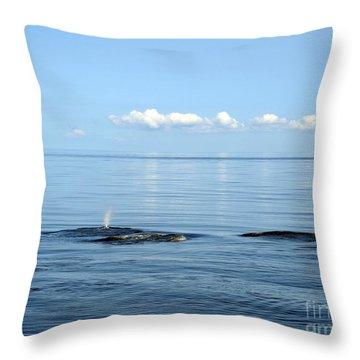 Surreal Throw Pillow by Sami Martin