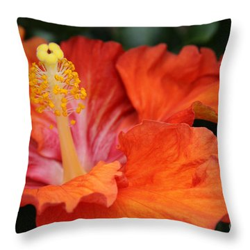 Surrender Throw Pillow by Sharon Mau
