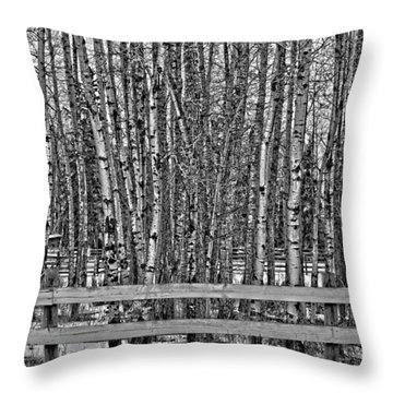 Susys Ranch  Throw Pillow by Jerry Cordeiro