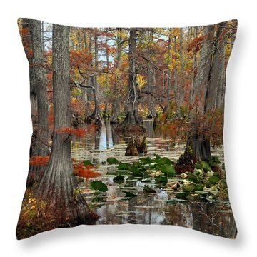 Swamp In Fall Throw Pillow by Marty Koch