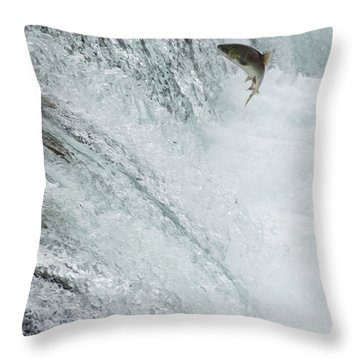 Swimming Upstream Throw Pillow by Gloria & Richard Maschmeyer
