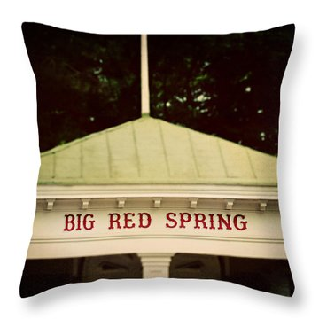 The Big Red Spring Throw Pillow by Lisa Russo