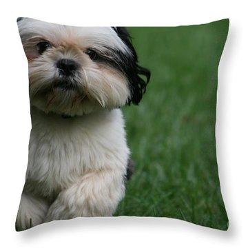 The Champion Throw Pillow by Valia Bradshaw