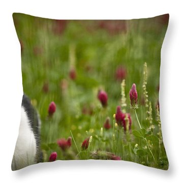 The Clover Field Throw Pillow by Kim Henderson