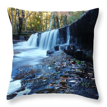 The Falls River Throw Pillow by Andrew Pacheco