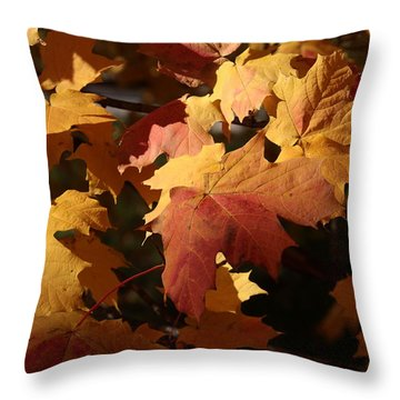 The Golden Days Of October Throw Pillow by Lyle Hatch