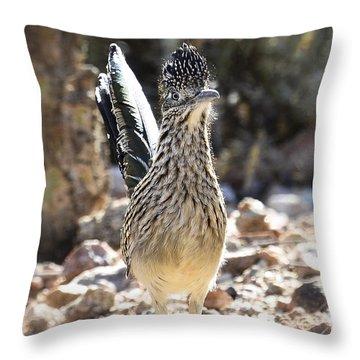 The Greater Roadrunner  Throw Pillow by Saija  Lehtonen