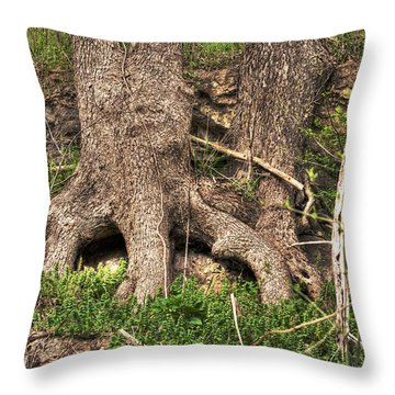 The Hobbit Hole Throw Pillow by William Fields