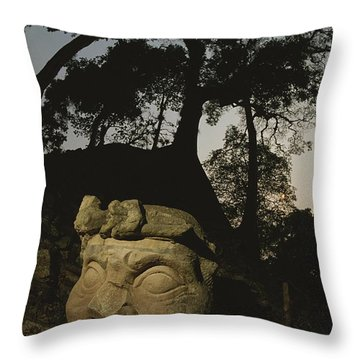 The Honduran Sun Setting Throw Pillow by Kenneth Garrett