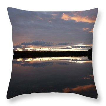 The Last Glow Throw Pillow by Heiko Koehrer-Wagner