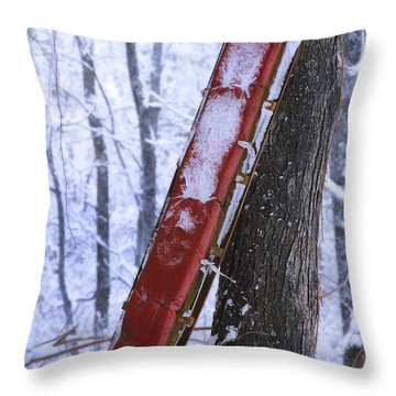 The Last Ride Throw Pillow by Ron Jones