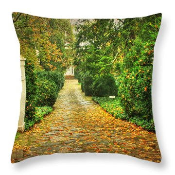 The Long Lonely Path Throw Pillow by Darren Fisher