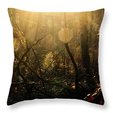 The Looking Glass Throw Pillow by Jessica Brawley