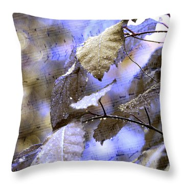 The Melody Of The Silver Rain Throw Pillow by Jenny Rainbow