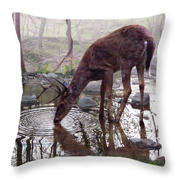 The Pause Throw Pillow by Bill Stephens