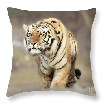 The Prowler Throw Pillow by Inspired Nature Photography Fine Art Photography