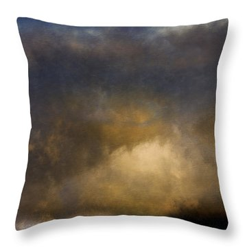 The Reef Throw Pillow by Ron Jones