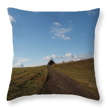 The Road To Nowhere Throw Pillow by Robert Margetts