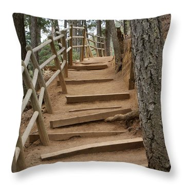 The Trail To The Top Throw Pillow by Ernie Echols