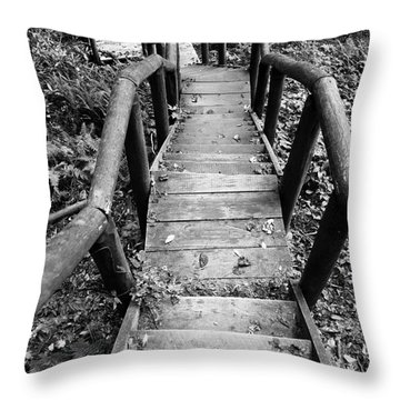 The Way Down Throw Pillow by Olivier Steiner