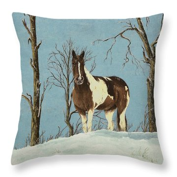 There Is A Season Throw Pillow by Mary Ann King