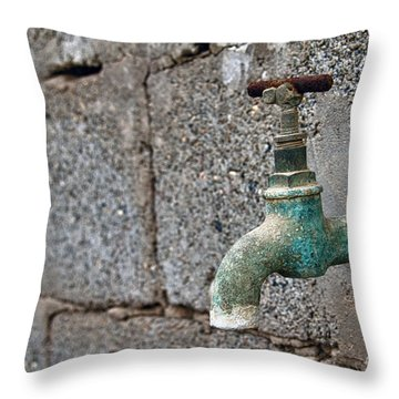 Thirsty Throw Pillow by Stelios Kleanthous