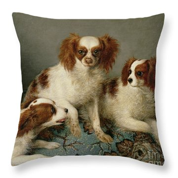 Three Cavalier King Charles Spaniels On A Rug Throw Pillow by English School