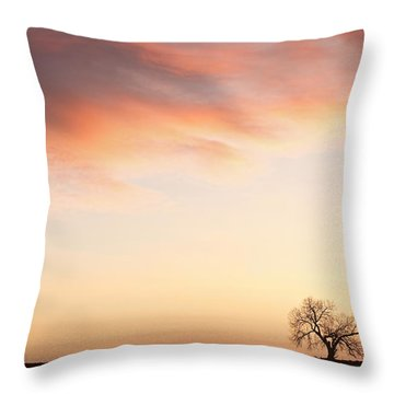 Three Trees Sunrise Sky Landscape Throw Pillow by James BO  Insogna