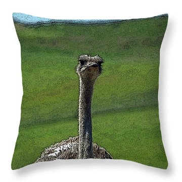 Ticket Please Throw Pillow by Teri Schuster
