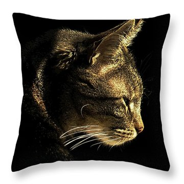 Tiger Within Throw Pillow by Dale   Ford