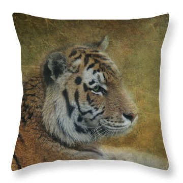 Tigerlily Throw Pillow by Claudia Moeckel