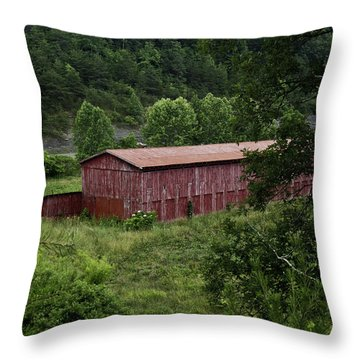Tobacco Barn From Afar Throw Pillow by Douglas Barnett