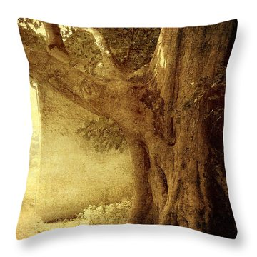 Touch Of History. Wicklow. Ireland Throw Pillow by Jenny Rainbow