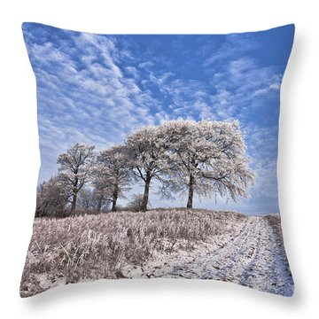 Trees In The Snow Throw Pillow by John Farnan