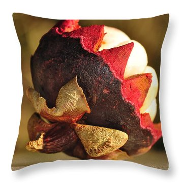 Tropical Mangosteen - The Medicinal Fruit Throw Pillow by Kaye Menner