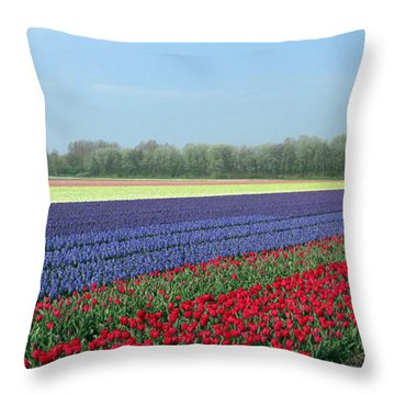 Tulip And Hyacinth Fields In Holland. Panorama Throw Pillow by Ausra Huntington nee Paulauskaite