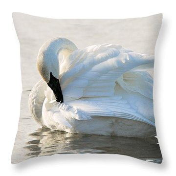 Tumpeter Swan Throw Pillow by Larry Ricker