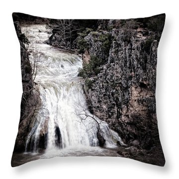 Turner Falls Roar Throw Pillow by Tamyra Ayles