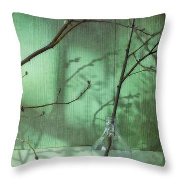 Twigs Shadows And An Empty Beer Jug Throw Pillow by Priska Wettstein