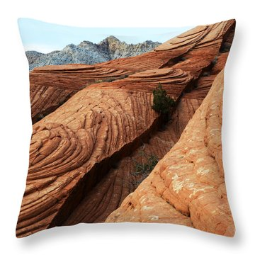 Twisted Landscape Throw Pillow by Bob Christopher