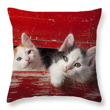 Two Kittens In Red Drawer Throw Pillow by Garry Gay
