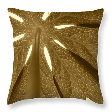 Umbrella In Sepia Throw Pillow by JD Grimes