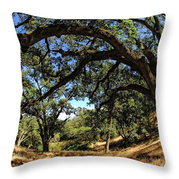 Under The Oak Canopy Throw Pillow by Donna Blackhall
