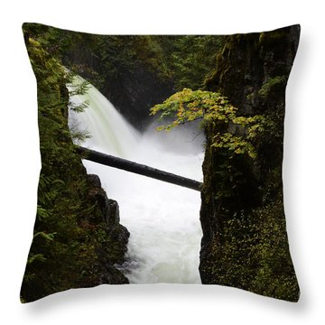 Upper Qualicum Falls Throw Pillow by Bob Christopher