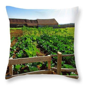 Vegetable Farm Throw Pillow by Carlos Caetano