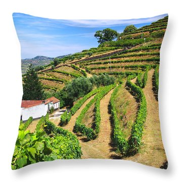 Vineyard Landscape Throw Pillow by Carlos Caetano