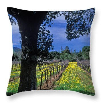 Vineyard View Throw Pillow by Kathy Yates